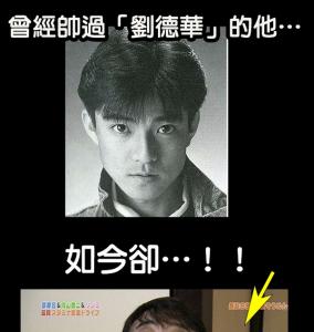 震驚!!武打明星「甄子丹」竟爆肥成這個模樣!家人都認不出他…