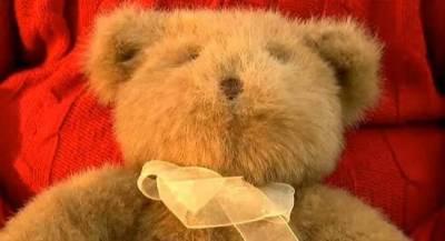 驚悚!二手店買來的泰迪熊!竟比「安娜貝爾」更可怕!!