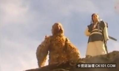 越南版小龍女曝光 網友:陳妍希可以被原諒了!