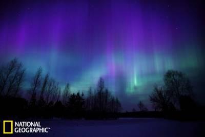 絢爛北極光如垂落天幕