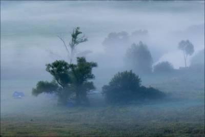 攝影師拍山中濃霧奇景似詭異仙境