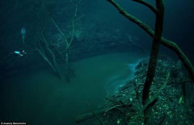 探訪墨西哥神秘水下洞穴:薄霧流淌如河流