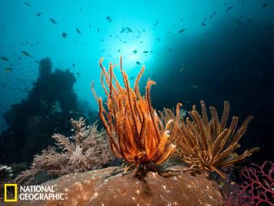 國家地理評2013最佳旅行勝地:挪威北冰洋之門