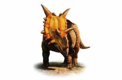 十大不可思議又存在的恐龍
