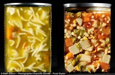一切兩半的食物:陌生角度探索食物內部世界