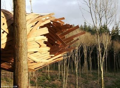 英國學生打造終極版樹屋:簡單易造結構有趣