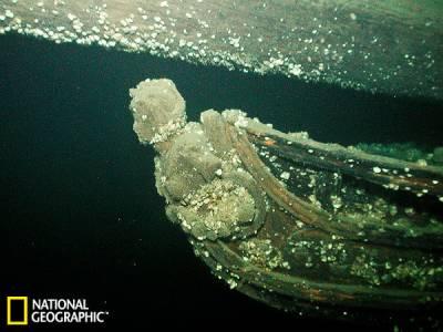 探訪兩百年前美國戰爭沉船:女神像被貝類覆蓋