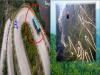 這「全世界最危險10條的公路」台灣竟然上榜了!沒想到「這個地方」竟然排行在前面....太可怕了!