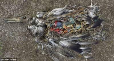 荷蘭學生發明海洋吸塵器:可回收200億噸垃圾