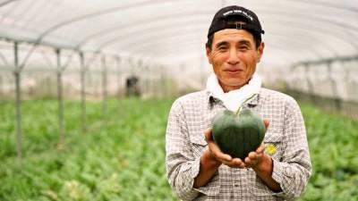 日本農民培育出心形西瓜