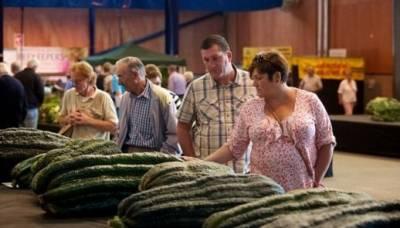 世界各地巨型蔬菜:黃瓜可達半人長