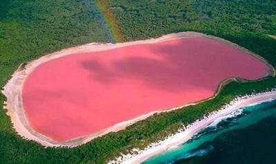 世界各地奇特粉紅湖泊:藻類瘋狂繁殖產生色彩