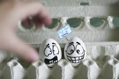 攝影師有趣的蛋蛋攝影
