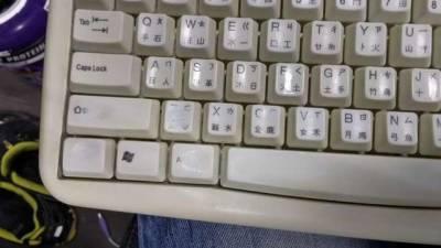 男子將用了很久的鍵盤拆開,沒想裡面竟發現『史前生物』!!!太駭人啦!