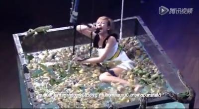 天吶,泰國變態節目!蛤蟆攻上,蟒蛇攻下!活活人與獸!