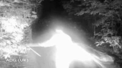 農夫安裝「攝影機」看有沒有盜獵者,捕捉到的畫面卻讓他當場嚇壞!沒想到他竟然拍攝到了...太可怕了!