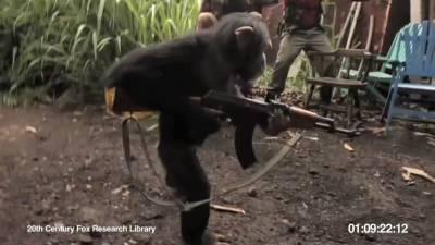 真實重現猩球崛起!黑猩猩拿槍掃射人類?!